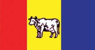 राप्रपालाई निर्वाचन आयोगले दियो मान्यता, झण्डामा 'गाई' र चुनाव चिन्हमा 'हलो'
